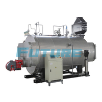 Steam Boiler Horizontal Chamber Combustion